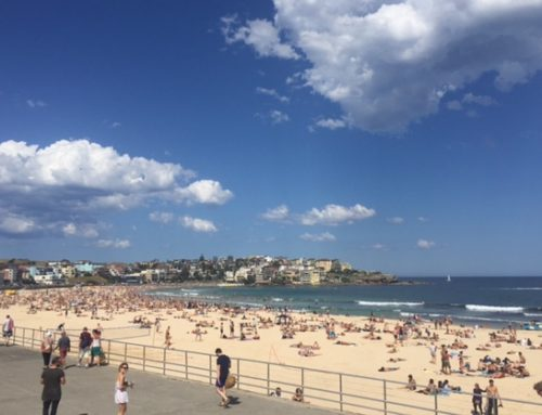 5 Things You Must do in Bondi Beach